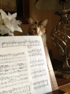 My cat Kilala sitting on the organ, watching me practice
