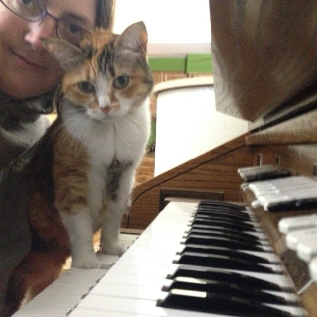 My cat Kilala standing on the keys while I was practicing.